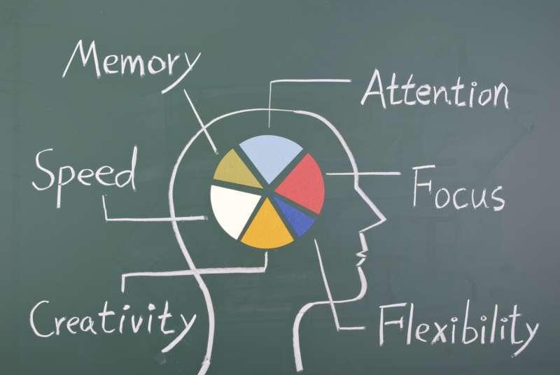 Áreas conceptuales del cerebro